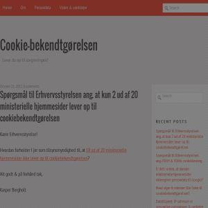 Cookiebekendtgørelsen - Lever du op til cookie-lovgivningen?